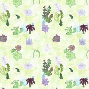Pastel Succulent Tile
