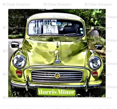 Rrmorris-with-white-border_preview