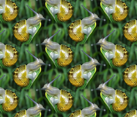 snail fabric by threebranchesdesign on Spoonflower - custom fabric