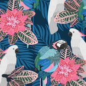 Rtropical_birds_shop_thumb
