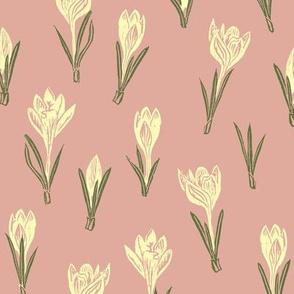 pale gold crocuses on pink