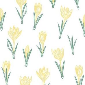 pale yellow crocuses
