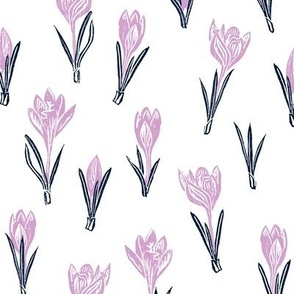 lavender and navy crocuses