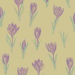 soft purple crocuses on tan