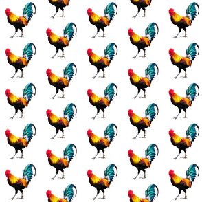 Rooster On White
