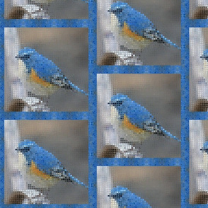 Rrbird-mosaic-1200_shop_thumb