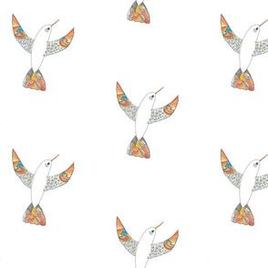 Hummingbird of Spring 2