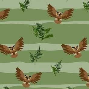 owl and fern