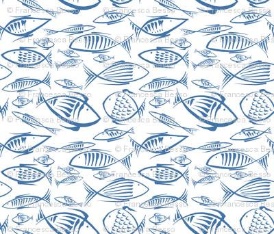 fishes white navy50