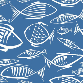 fishes navy