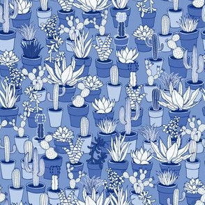 Succulents - monochrome blue - small scale