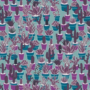 Succulents - purple, plum and teal on sea grey