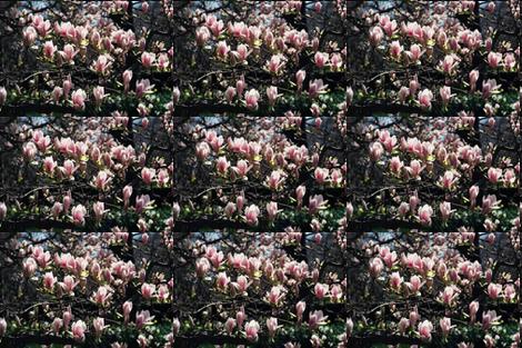 19870010MOBOGAMAGNOLIAS fabric by karenspix on Spoonflower - custom fabric