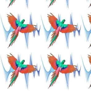Parrot pattern