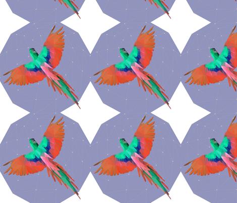 Geometric Lorikeet fabric by frankie_maree on Spoonflower - custom fabric