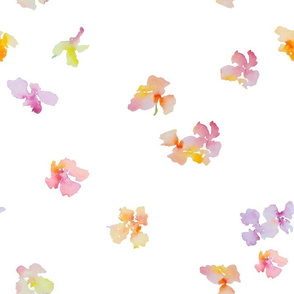 Falling Petals-white background