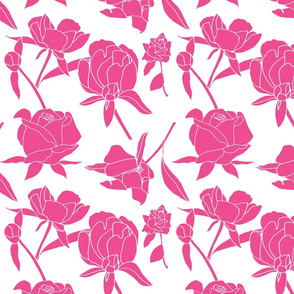 Rose blossoms in deep pink