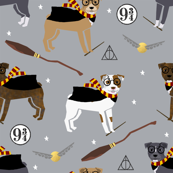 pitbull magic witch wizard dog breed fabric grey