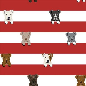 pitbull stripes dog breed fabric red