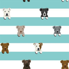 pitbull stripes dog breed fabric light blue