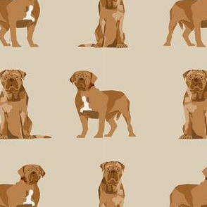 french mastiff simple dog breed fabric tan