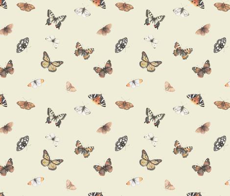 Orange butterflies fabric by daniwilliams on Spoonflower - custom fabric