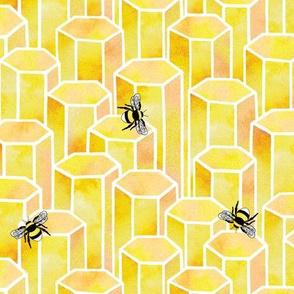 Bees & Hexagons