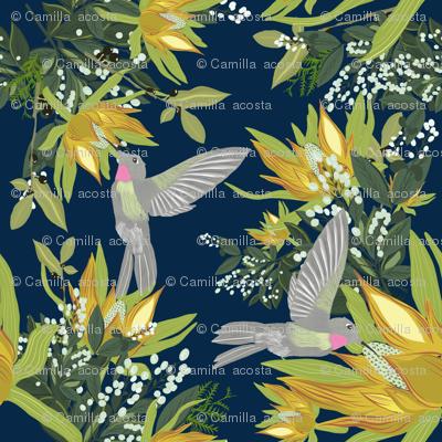 Fleeting Hummingbird