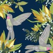 Rrhummingbird-pattern_shop_thumb
