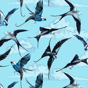 Rswift-tattooswallows150_shop_thumb