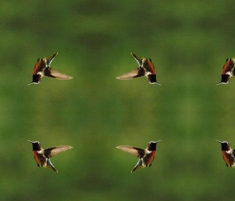 Rrrhummingbirdcrop2_shop_preview