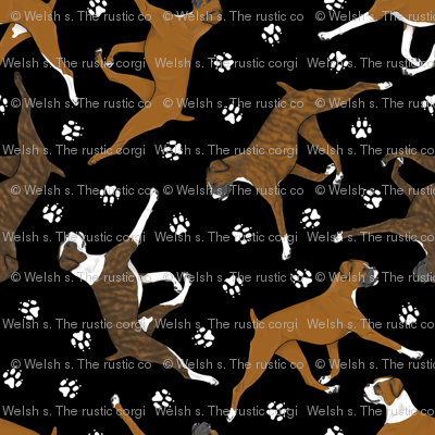 Trotting uncropped Boxers and paw prints - black