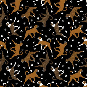 Trotting natural Boxers and paw prints - black