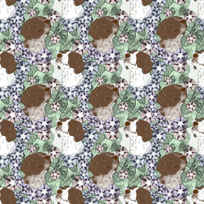 Floral French Brittany portraits C