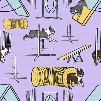 Simple Boston Terrier agility dogs - small purple