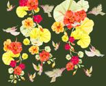 Rhummingbirds-in-the-air_thumb