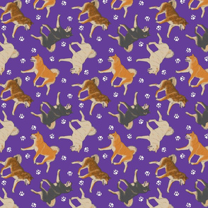 Trotting Shiba Inu and paw prints - purple