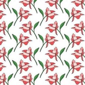 ROSE_Blossom_RedGreen