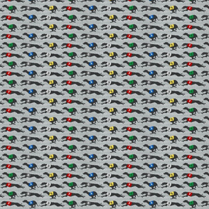 Small Coursing Whippets border - gray