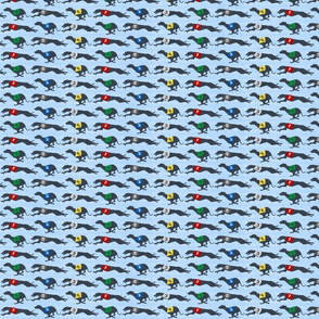Small Coursing Whippets border - blue