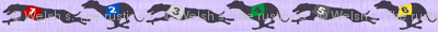 Small Coursing Whippets border - purple