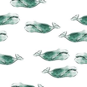 jade whales