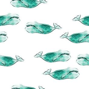 aquamarine whales
