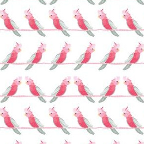 Galahs on a wire SMALL print by Mount Vic and Me