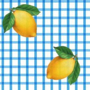 blue gingham w big lemons