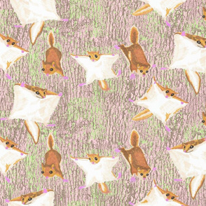Rrflying-squirrel_shop_thumb
