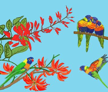 Rainbow Lorikeets  fabric by korat_designs on Spoonflower - custom fabric