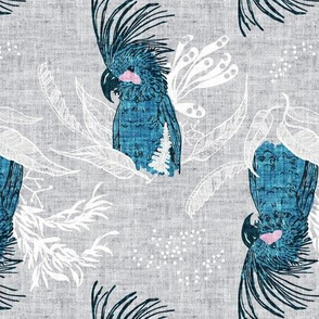 Terra Australis Cockatoos (MED)