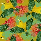 Rrkauai-amakihi-gold-150_shop_thumb