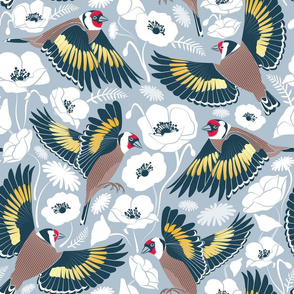 Goldfinches flying over white poppies // blue grey background